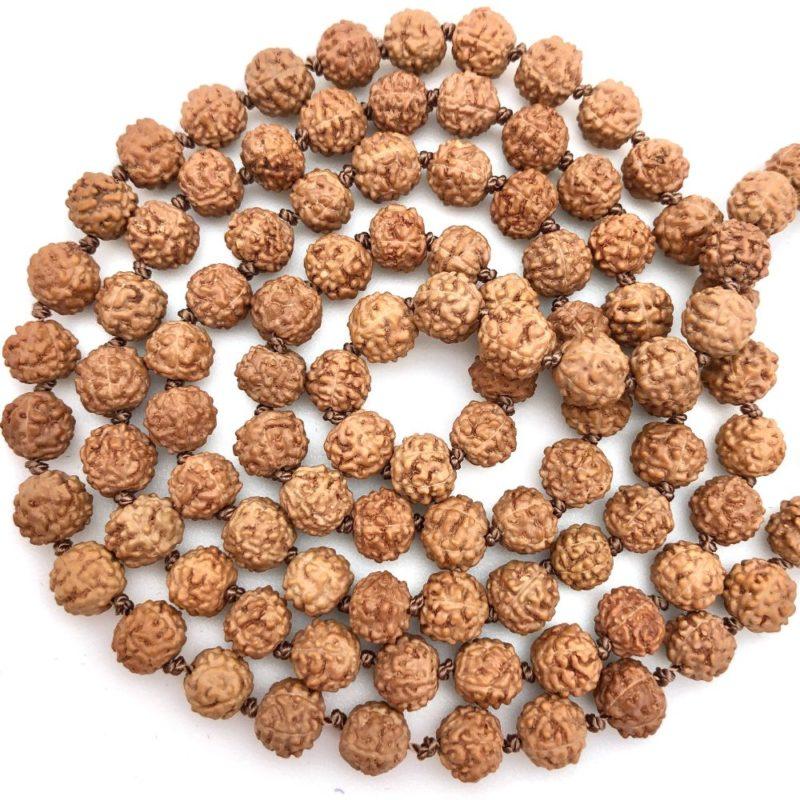 Rudraksha beads closeuep